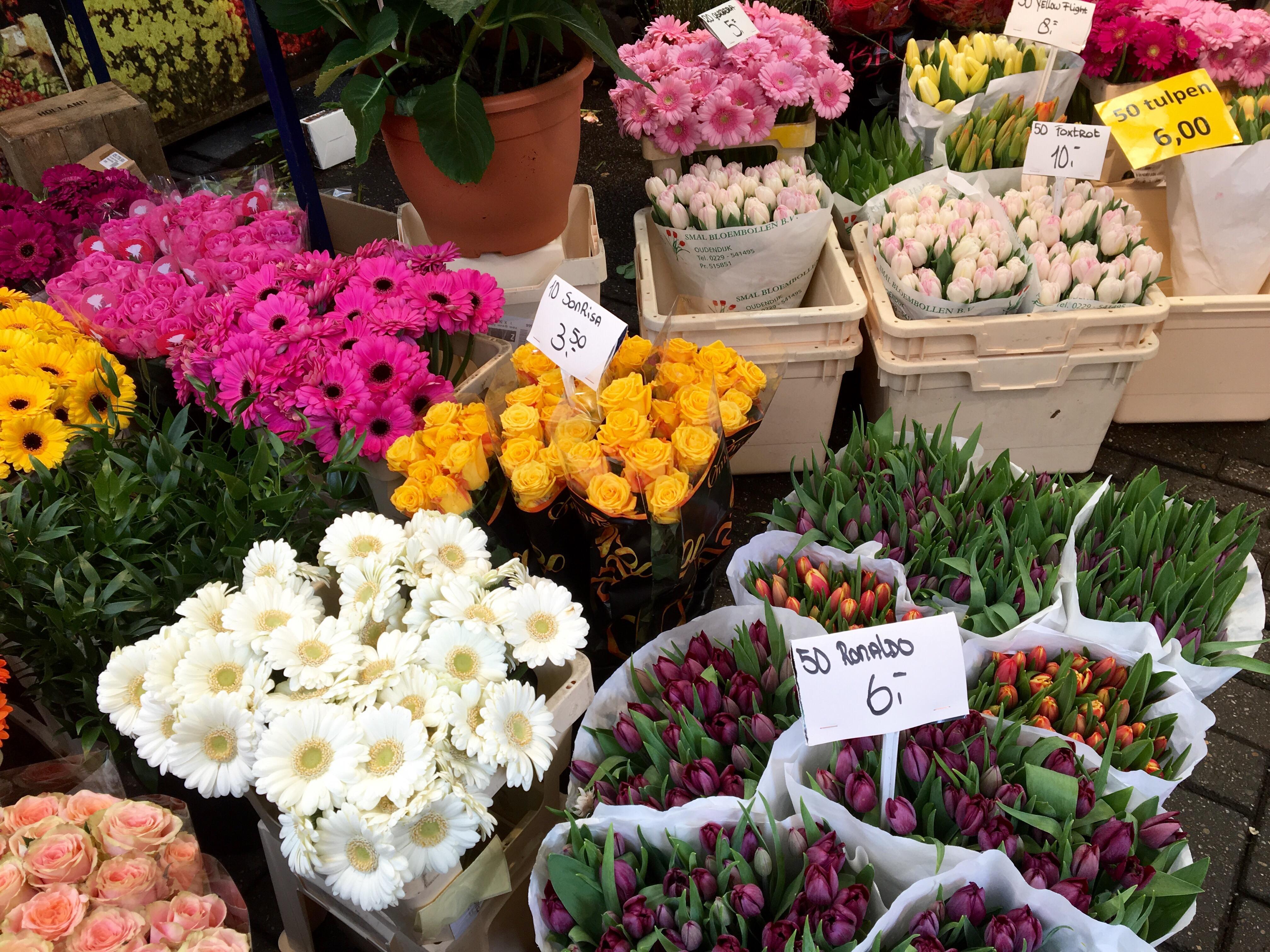 アムステルダム最大のフラワーマーケット「シンゲルの花市場」