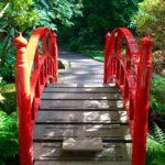 期間限定!デン・ハーグの本格的な日本庭園